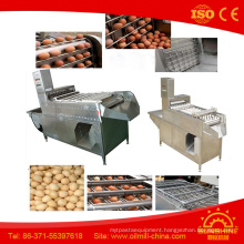 10000 Pieces Per Hour Egg Peeler Boiled Egg Peeling Machine