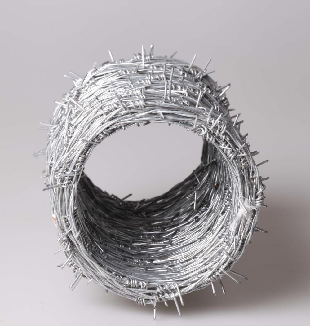 Barbed Iron Wire2