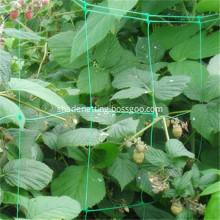 White Plastic Plant Climbing Net