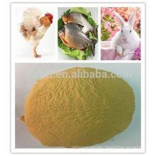 Protein feed yeast animal feed