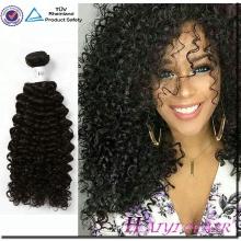 Großhandels100% Jungfrau-brasilianische Haar-Bündel verworrenes gelocktes Menschenhaar-natürliches Farben-Menschenhaar