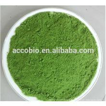 Nutritional Supplement Chlorella extract,Chlorella Powder/Tablets