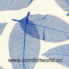 Fond d'écran feuilles de magnolia (SHZS01277)