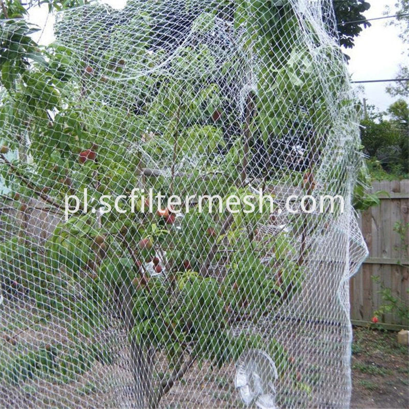 Fruit Bird Netting