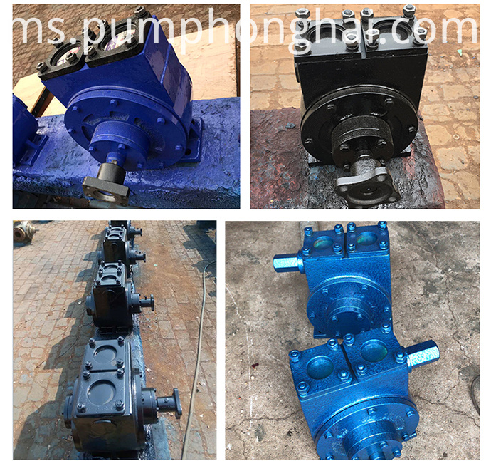 Vane oil pump