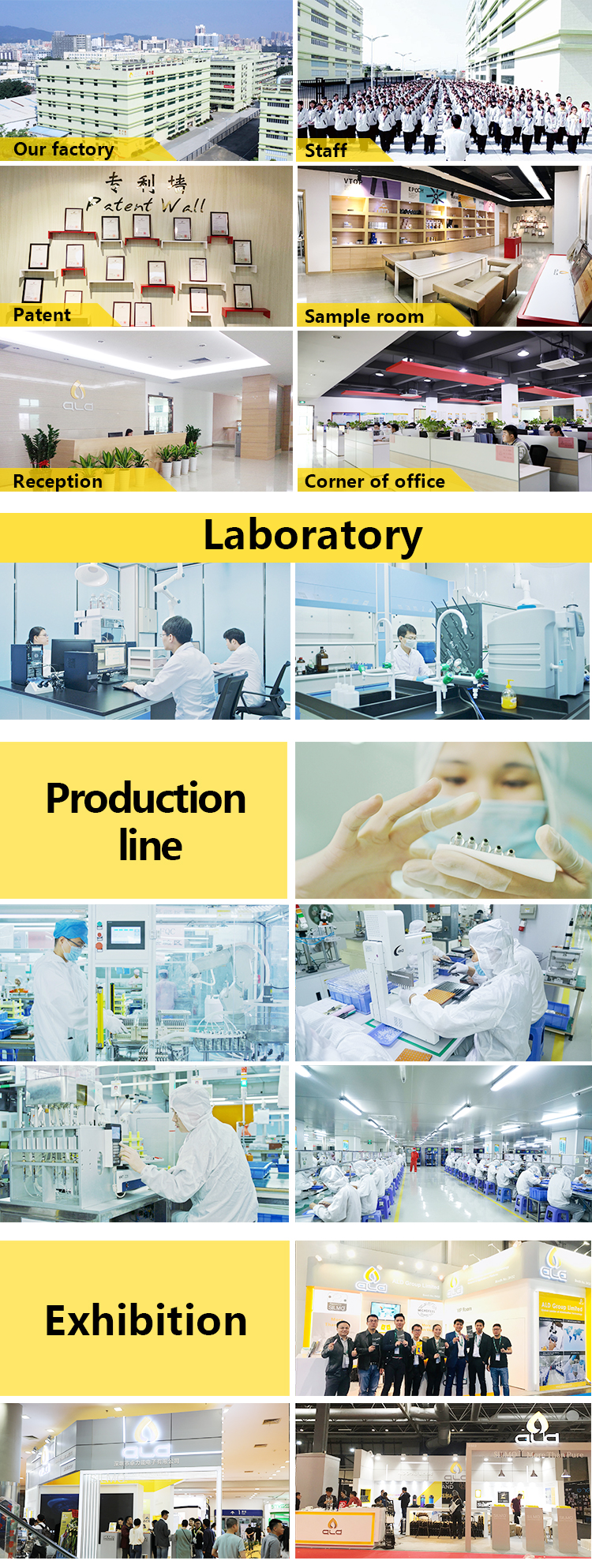 ALD factory introduction