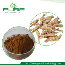 Dong Quai Extract / Angelica Sinensis Extract / Angelica PE