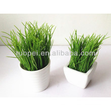 Beautiful real touch mini artificial bonsai with white ceramic pot