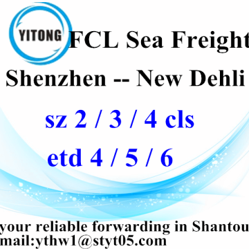 Shenzhen Global vracht Agent naar New Dehli