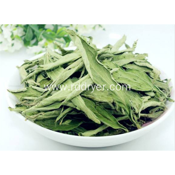 Stevia dryer, stevia drying equipment