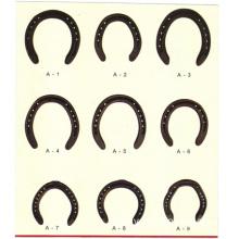 horseshoe, horseshoes, horseshoeing