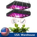 La meilleure LED élève la lumière 600W pour les herbes d'intérieur