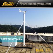 Turbina de viento micro inteligente 300W
