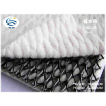 Factory PP Pet Tri-Dimension Compound Geonet for Drainage, Buliding Material