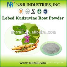 Kudzu Root Powder or Kudzu Root Extract Powder