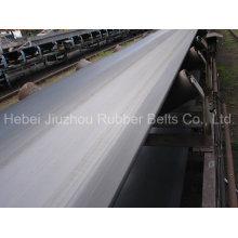 Polyester Ep1000/4 Gummiförderband