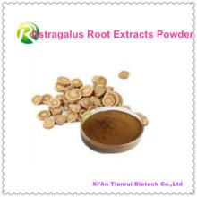 Extraits de racine d'astragalus de haute qualité en poudre