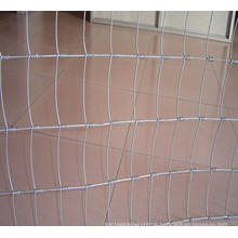 Hot Dipped Galvnized Farm Fence/Sheep Fence Wire