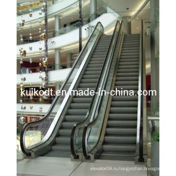 Домашний эскалатор высокого качества с En115