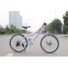 Hot Sale Günstige City Bike Lady Bike Frauen Fahrräder