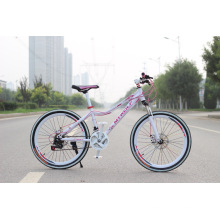 Hot Sale Cheap City Bike Lady Bike Women Bicycles