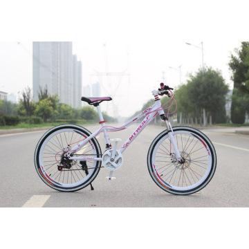 Venta caliente barato City Bike Lady Bike Bicicletas de mujer