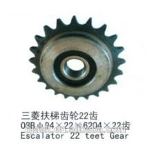 Rolltreppe 22-Zähne Getriebe für Rolltreppen Teile