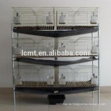 Jaulas de batería automáticas de codorniz avícola