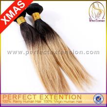 Eve Real Human Hair Top Grade Russian Hair Tape Hair Extens