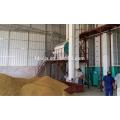 meilleur prix de la machine de séchage de riz de grain
