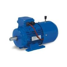 magnetic  brake motor