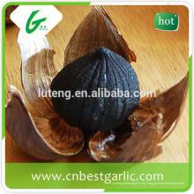 Extraer el ajo fresco negro