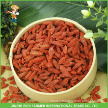 Dried Wolfberry Exporter in China Goji Berry 380g grains/50g To Brazil