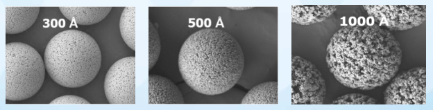 SEM micrographs of UniPS