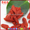 Goji berry powder where can you buy goji berries wolfberry fruit