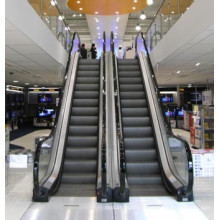 Escalator avec Max. Augmenter 10 mètres