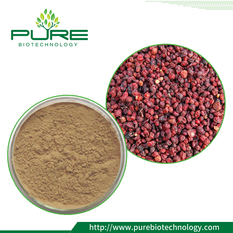 Schisandrae Chinensis Extract powder