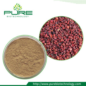 Schisandrae Chinensis Extract powder With Schisandrins 9%