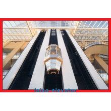 Motor sem engrenagem com elevador de elevador panorâmico de controle Vvvf