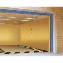 Ascenseur de voiture sûr et confortable (GRA10)