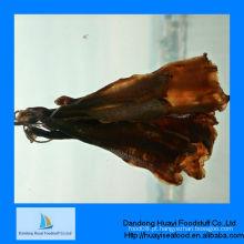 Alta qualidade nova iqf mar geoduck carne