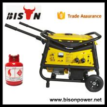 BISON China Taizhou 2500w sonido natural silencioso eléctrico 2800watt generador de LPG