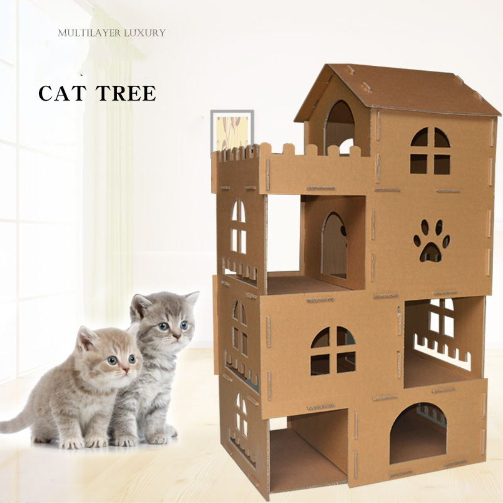 cat climbling tree