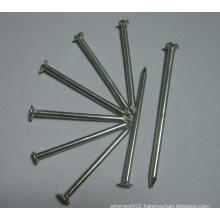 Industry Common Nail/Round Head Nail