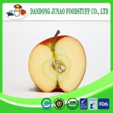 frozen	with sugar	nutritive	apple fruit