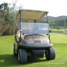 8 pulgadas Tire Champage Color Carrito de golf eléctrico 2 plazas