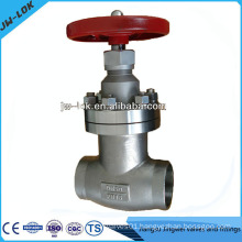 stainless steel sw end forged globe valve