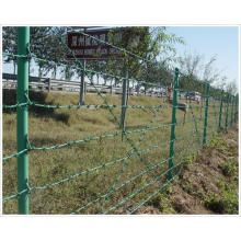 Alambre de púas revestido del PVC para la cerca (YB-Cerca 5)