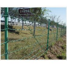 Arame farpado revestido de PVC para cerca (YB-Fence 5)
