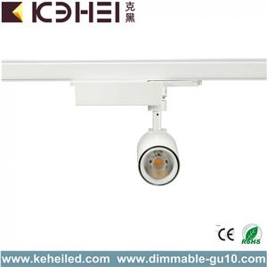 Rail d'éclairage blanc pur 4000K LED 12W